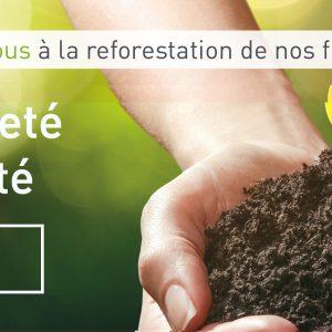 Decoplus Parquets s'associe à EcoTree, une société spécialisée dans le développement durable