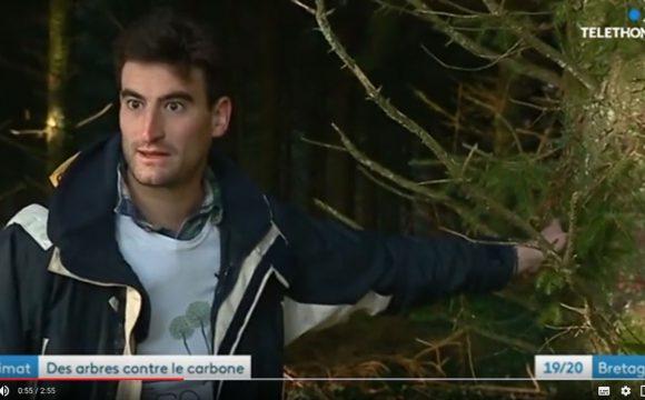 Reportage d'EcoTree sur France 3