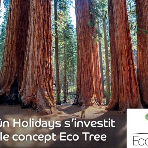 Salaün Holidays s'investit avec le concept EcoTree