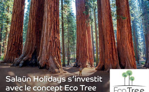 Salaün Holidays s'investit avec le concept EcoTree